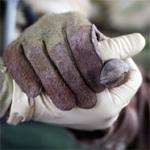 gloves-150